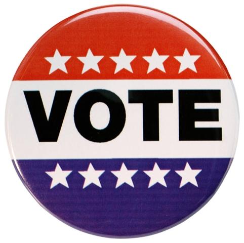 votazioni usa